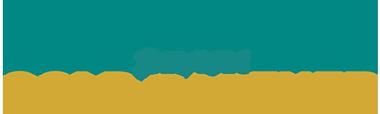 SoftENGINE Gold-Partner 2018/2019 Logo